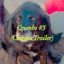 Crumbs #3